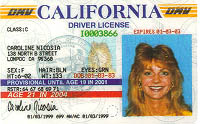 Sacramento Drivers License